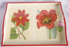 Whitelaw & Moss Tray - Red Bloom