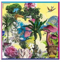 Christian Lacroix Jardin desReves Yellow